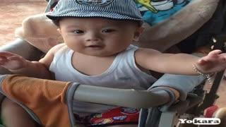 Về quê ngoại - Quang Lê (Karaoke)