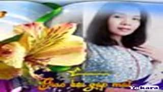 Karaoke Liên khúc Tình ca Quê hương & Lối về đất Mẹ (Quang Lê & Tường Nguyên) 1 TQB8K